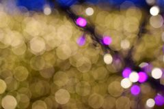 Bokeh Blured светлого дерева Стоковые Фото