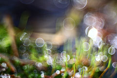 Bokeh blurred blue water reflections background Royalty Free Stock Images