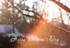 Bokeh de coeur sur l'arbre avec la lumière de coucher du soleil, fond de carte de voeux de jour du ` s de Valentine, carte de voe Images libres de droits