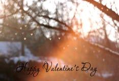 Bokeh de coeur sur l'arbre avec la lumière de coucher du soleil, fond de carte de voeux de jour du ` s de Valentine, carte de voe Photos libres de droits