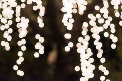 Bokeh de la luz en árbol Fotografía de archivo libre de regalías