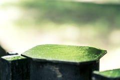 Bokeh de pedra do metal Fotografia de Stock