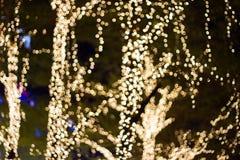 Bokeh - dekorative Kettenlichter im Freien, die am Baum im Garten hängen Stockfoto