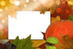 Bokeh della cartolina di autunno Immagini Stock