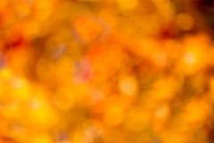 Bokeh do outono. fotos de stock