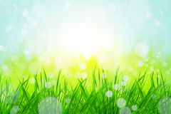 Bokeh with grass. Beautiful nature bokeh with grass background Stock Photography