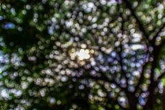 Bokeh. Green bokeh abstract light background Stock Photography
