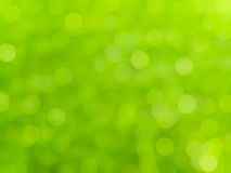 Bokeh green background Royalty Free Stock Image