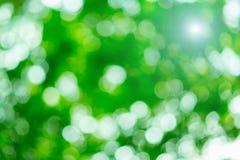 Bokeh hermoso verde claro Fotos de archivo