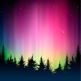 Bokeh kleurrijk achtergrond en silhouet van bos Stock Afbeelding