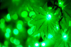 Bokeh light green defocus at night abstract background. Stock Images
