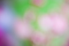 Bokeh Light on pastel color Background Royalty Free Stock Images