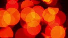 Bokeh, lumières brouillées banque de vidéos