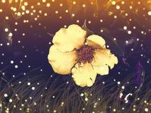 Bokeh natural background. Vibrant background with shiny bokeh. stock illustration