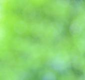 Bokeh nature abstract background Stock Image
