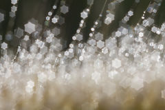 Bokeh from out of focus Stock Photos