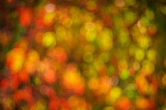 Bokeh of red, yellow and green Royalty Free Stock Photography