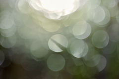 Bokeh , THE Reflection of sunlight in rice field. Stock Photo