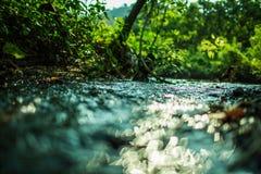 Bokeh rzeka w lesie Zdjęcie Royalty Free