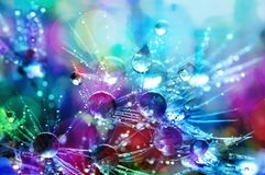 Bokeh Shot of Water Droplets Royalty Free Stock Image