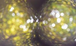 Bokeh of sunlight. Bokeh of sunlight deep in black circles Stock Photography