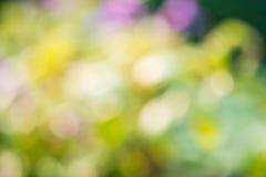 Bokeh verde astratto per fondo Fotografia Stock