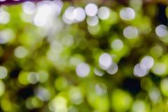 Bokeh verde e giallo burry Immagine Stock Libera da Diritti
