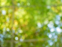 Bokeh vert à l'arrière-plan de texture photo libre de droits