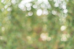 Bokeh vert de feuille comme texture de fond Photographie stock libre de droits