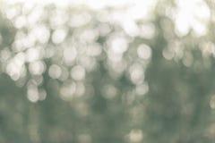 Bokeh vert de feuille comme texture de fond Photos libres de droits