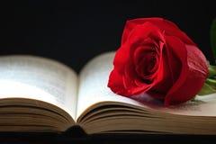 boken steg Royaltyfria Foton
