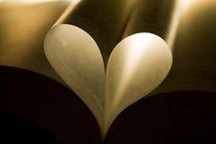 bokhjärta Fotografering för Bildbyråer