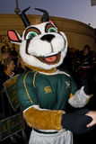 Bokke - Mascot Stock Photo