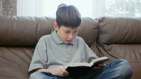 bokpojke little avläsning lager videofilmer