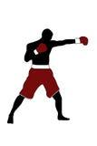 bokser Zdjęcie Stock