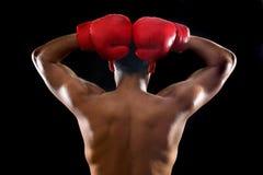 bokser Obrazy Royalty Free