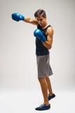 Bokser klaar te vechten Het in dozen doen, macht en sterkte, kampioen stock afbeelding
