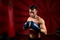 Bokser z rękawiczkami i bez koszuli pozować w gym Obraz Royalty Free