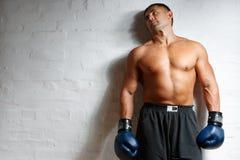 boksera mężczyzna ściana fotografia stock