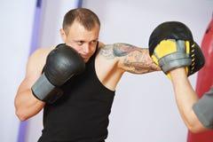 Boksera mężczyzna przy bokserskim szkoleniem z poncz mitenkami Obraz Stock