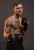 Boksera młody człowiek z bokserskimi rękawiczkami Zdjęcie Stock