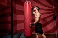 Boksera narządzanie dla trenować, rozciągający out i pracujący Zdjęcie Stock