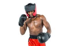 Boksera spełniania bokserska postawa zdjęcie royalty free