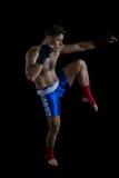 Boksera spełniania bokserska postawa obrazy royalty free