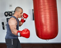 Boksera szkolenie w gym Zdjęcia Stock
