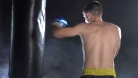 Boksera szkolenie w gym zdjęcie wideo