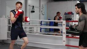 Boksermens de opleidingsstempels door stootkussen in dozen te doen trainen samen op boksring Professionele bokser opleiding met p stock video