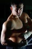 bokserscy mężczyzna zdjęcia royalty free