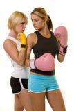bokserscy przeciwników Zdjęcia Stock