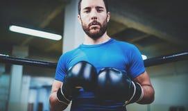 bokserscy rękawiczek mężczyzna potomstwa Młody boksera wojownik nad zamazanym tłem Bokserski mężczyzna przygotowywający walczyć B Fotografia Royalty Free